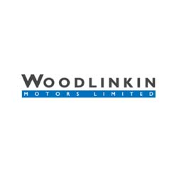 Woodlinkin Citroen